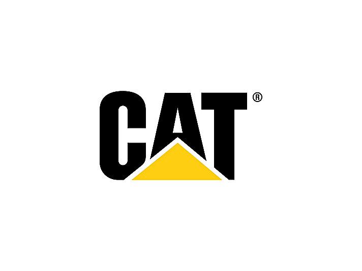 M315D2 - Phú Thái Cat